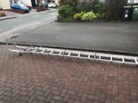 4.5 meter double cat ladders