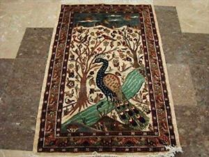 Amazing Peacock in Jungle Bird Fine Area Rug Hand Knotted Wool Silk Carpet (4.1 x 2.8)'