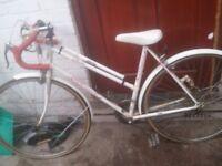 racing bike,Philips juicer, Laura Ashley pouffe, Panasonic breadmaker, camping pans £50 FREE DELIV