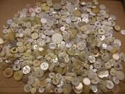 Vintage White Buttons Lot