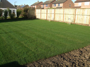 SOD KENTUCKY BLUEGRASS INSTALLED OR JUST DELIVER FRESH CUT LUSHL