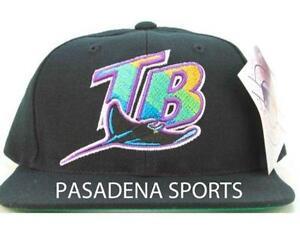 4d48d3159c3 Tampa Bay Rays  Sports Mem