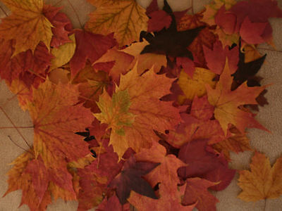 FALL LEAVES-FALL WEDDING DECORATIONS 102+ REAL PRESSED LEAVES - Fall Leaves Decorations