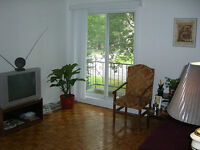 5 and 1/2 apt for rent in Brossard!