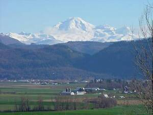 Beautiful All Inclusive FULLY FURNISHED SUITE w/ Mt. Baker View