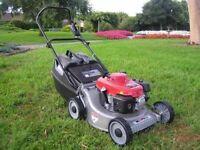 Rosebud garden service *grass cutting*