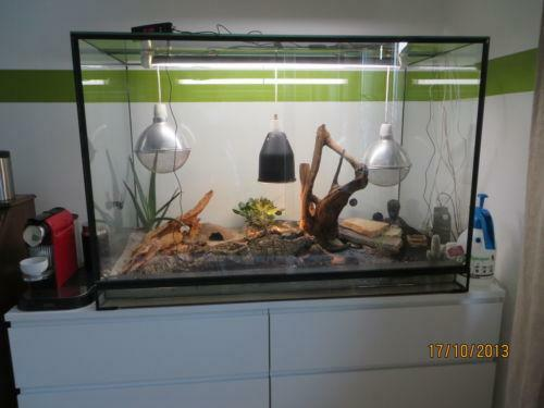 terrarium 120x60x80 ebay. Black Bedroom Furniture Sets. Home Design Ideas