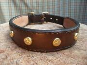 Staffie Collar