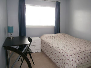 Furnished one bedroom available for rent on Nov 1st