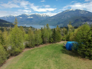 Kaslo Land and Buildings for sale