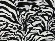 Zebra Print Material