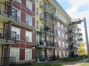 Large One Bedroom Appartment for Rent - $950