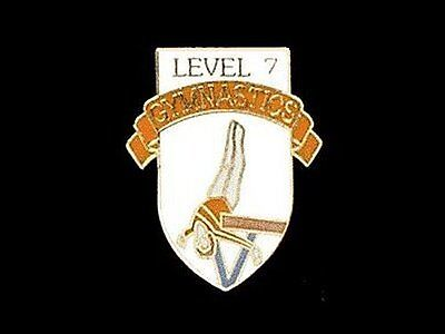 Level 7 Gymnastics Lapel Pin - THOSE 9.0s ARE WITHIN REACH!
