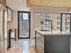 Rarely offered DT 1,000 sq. ft (2 bd/2 bth) + private roof