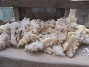 Raw Sheep Fleece