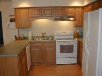 why replace your kitchen cabinets