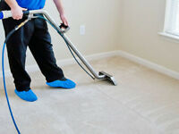 PROFESSIONAL CARPET CLEANING IN SWINDON - 07760 482436