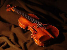 Violin Lessons Stirling Stirling Area Preview