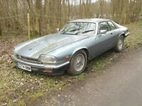 Wanted Jaguar XJS