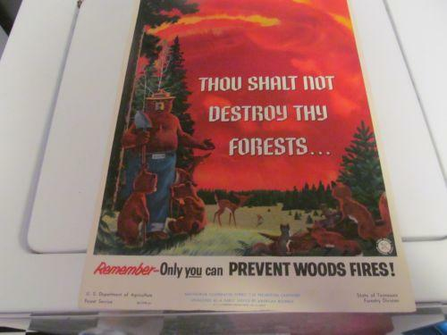 vintage forest service signs posters