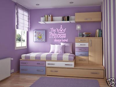 (PRINCESS SLEEPS HERE Girls Teen Bedroom Wall Art Decal)
