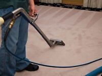 Pro- Steam Carpet &Upholstery cleaning