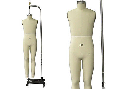 Professional Pro Working Male Dress Formmannequinfull Size 36 Wlegs
