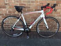 Specialized Roubaix Race Bike, USED in very good condition