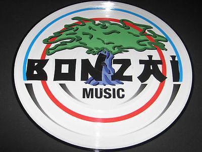 """Picture Vinyl 004 Bonzai Yves Deruyter """" Calling Earth """" NEU absolute Rarität"""