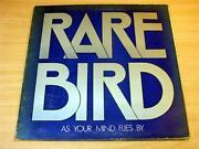 RARE Bird LP