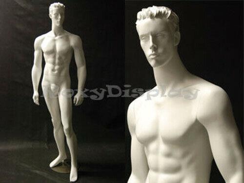 Male Mannequin Manequin Manikin Dress Form Display #MD-CCT6W