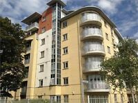 2 Bedroom Flat - Town centre- Kings Road, Reading - Available 9th September