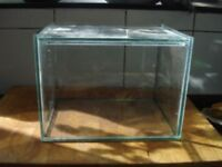 Immortal Spider Insect Glass Display Tank Vivarium Top Opening