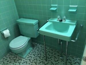 Vintage Turquoise sink and toilet