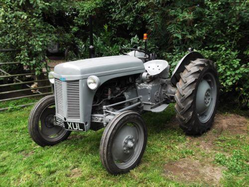 how to know what petrol massey ferguson te20 i have
