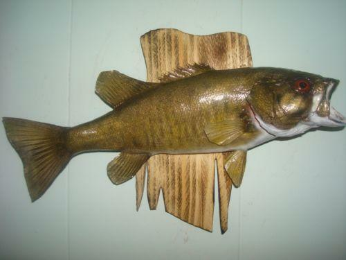 Fish Wall Mount Ebay
