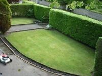 Is YOUR garden in need of a tidy up ? fence erected?all post codes covered, all waste removed by us
