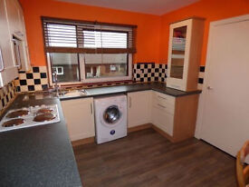 3 Double bedrooms, newly renovated, spacious, only £450PCM, and can move in before Xmas!