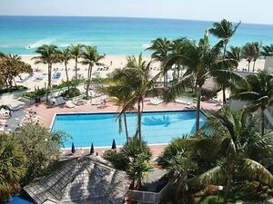 Golden Strand - Florida oceanfront condo,  Mar 18 - Apr 8