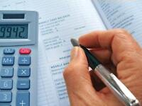 Professional Accounting and Business Services