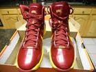 USC Nike Shoes
