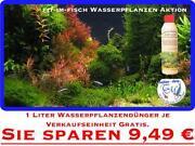 50 Aquariumpflanzen Wasserpflanzen Pflanzen Pflanze Aquarium Aquarienpflanzen