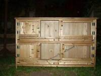 Double decker rabbit hutch and pigs
