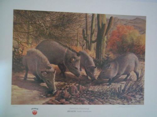 Remington Calendar Art : Tom beecham art from dealers resellers ebay