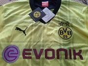 Borussia Dortmund Trikot 2013