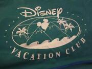 Disney Vacation Club Bag