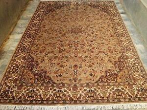 Beige Tan Flowral Classic Rectangle Area Rug Hand Knotted Wool Silk Carpet (9.3 x 6.0)'