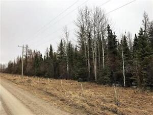 RR 50, Rural Clearwater County, Alberta Land For Sale!