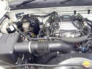 Holden Rodeo Engine
