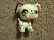 Littlest Pet Shop White Dog